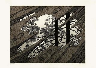 Escher - Pozzanghera