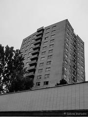 Wolkenkratzer ohne Wolken am Hansaplatz (Sockenhummel) Tags: berlin skyscraper fuji haus finepix fujifilm tiergarten hansaviertel x20 hochhaus wolkenkratzer hansaplatz fujix20