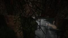 Efeuwuchs (Minecraft Wallpaper) Tags: wallpaper strand landscape mond wasser nebel ambient hd aussicht landschaft sonne schatten baum umgebung dner fullhd gronkh taddl minecraft pewdiepie sarazar herrbergmann pietsmiet thediamondminecart ungespielt