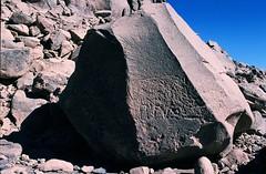 Gonoa (ursulazrich) Tags: rockart sahara tschad ciad tchad chad tibesti ennedi petroglyphs gravuren paintings rhinoceros nashorn fauna ignimbrit