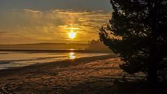 Empty beach in the end of November (kjllut) Tags: beach sweden norrland skellefte vsterbotten havsbad byske