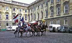 SP_A0025a Knights at Buda Castle (Andras, Fulop) Tags: cameraphone horses hungary budapest palace knights royalpalace riders budacastle lionyard oroszlanosudvar