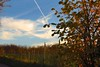 Eijsden, zaterdag 22 november, Foto: Roel Theunissen