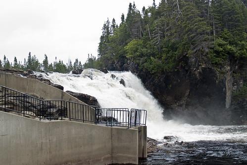 torrent river falls  ( Fish need help )