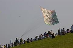 imgp3027 (keithkami) Tags: kite japan big saitama kasukabe