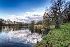 Parc de Woluwe (Philippe Clabots (#PhilippeCPhoto)) Tags: nature belgium belgique belgie hiver parc saison parcdewoluwe
