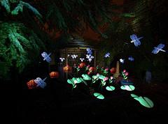 Tiki Bar at night (Capt_Sensible) Tags: light lightpainting painting lp lightpainters