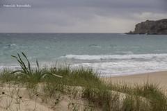 Spain - Cadiz - Tarifa - Bolonia Beach (Marcial Bernabeu) Tags: españa beach andalucía spain dunes playa andalucia cadiz andalusia cádiz bolonia tarifa bernabeu dunas marcial bernabéu