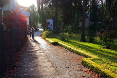 Surprising winter sun - (rotraud_71) Tags: trees winter people sun backlight way shadows vanagram blinkagain