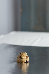 _MG_3844-2 (paulclancy1) Tags: gorillas chocolatechipcookies homemadecookies paulclancyphotography 600lbgorilla
