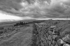 Roman Winter Beat (miketonge) Tags: roman northumberland northumbria romanwall hadrianswall craglough steelrigg hotbank
