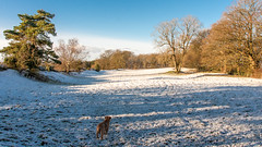 Capler camp Brockhampon with a spattering of snow. (IanbPhoto) Tags: camp snow with jan sony small sigma spattering 2015 a700 18250 capler brockhampon