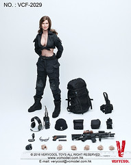 VERYCOOL TOYS VCF-2029 Black Female Shooter - 21 (Lord Dragon ) Tags: hot female toys actionfigure doll angelinajolie verycool onesixthscale 16scale 12inscale