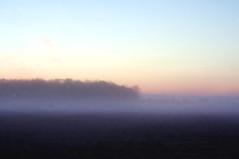 124 (Lee Saboro) Tags: trees sky field fog sunrise landscape