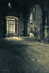 Monasterio de Rioseco (alonsoeg) Tags: ruina burgos monasterio rioseco duotono merindades alonsoeg