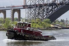 r_160519284_whcedu_a (Mitch Waxman) Tags: newyorkcity newyork newjersey tugboat statenisland moran bayonnebridge killvankull workingharborcommittee educationtour