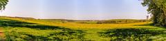 Blick auf Heroldstatt (ringo_lehrmann) Tags: panorama de deutschland flora natur felder blte landschaft bume bltenbltter frhling badenwrttemberg blhen blumenundpflanzen heroldstatt