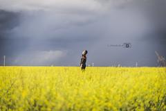 Oracion de la lluvia.... (LittleMuoz) Tags: azul nubes amarillo littlemuoz nikon 610 50mm 14 tormenta olor