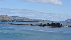 The Otago Harbour