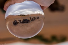 Compagni di Viaggio (Algol69) Tags: ball desert crystal camel morocco sphere marocco deserto sfera