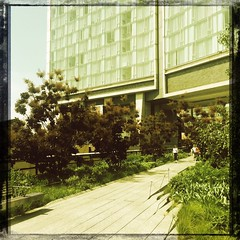 The High Line is so different with greenery. Even with filtering. (catsynth) Tags: lowy hipstamatic canocafenol