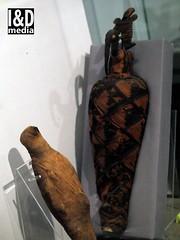 mummified ibis and hawk (Internet & Digital) Tags: mummy mummified cats ibis victorian mummifiedcats thoth hawk sacrifice ritual ancient ancientegypt offerings god isis horus osirus egypt giftstothegods exhibition glasgow kelvingrovemuseum animalmummycatmummygiftstothegodsexhibitionglasgowkelvingrovemuseummummifiedcatsancientegyptegyptcroccodilecatheadibisvictoriansacrificeritualancientofferingsgodc21troyidmedia