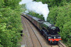 Cathedrals Express (philwakely) Tags: train rail railway trains steam salisbury locomotive railtour railways wilton steamtrains flyingscotsman steamlocomotive lner 4472 cathedralsexpress sirnigelgresley 60103 mainlinesteam wiltonsouth wiltonwest