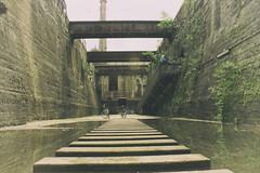 Der Weg bers Wasser (benni_sc) Tags: old wasser duisburg landschaftsparknord kohlegrube