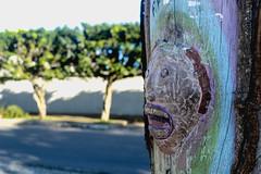 (igorduane) Tags: wood man tree scream