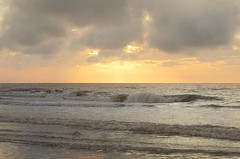 St. Simons Island (Regina/acrphoto) Tags: ocean beach sunrise waves seaturtles stsimonsisland beachsunrise goldenisles