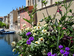 summertime (fotomie2009) Tags: martigues francia france provence provenza flowers fiori canal st sbastien canale