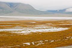 Arctic Tundra VI (danielfoster437) Tags: adventure arctic arcticcircle arcticsummer arctictundra extremeterrain landscape mountain nature outdoors spitsbergen summer svalbard svalbardsummer terrain tundra wilderness