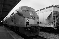 Amtrak - Train 90-Palmetto (donwest48) Tags: trains amtrak
