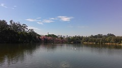 Nature vs. City (jonatan.waldow) Tags: park city brazil nature brasil ibirapuera paulo so