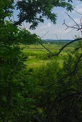 Toward the Meadow (wackybadger) Tags: wisconsin trempealeaurivermeadowsna sna346 nikon wisconsinstatenaturalarea buffalocounty