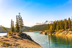 Lake Minnewanka 2 (Shane Kiely) Tags: banff canada lakeminnewanka tunnelmountain vermillionlakes