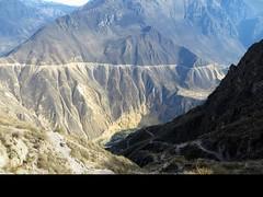 Colca Canyon-71