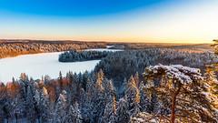 Aulanko (Tuomo Lindfors) Tags: winter snow suomi finland lumi talvi hämeenlinna aulanko aulangonnäkötorni lusikkaniemi theacademytreealley aulankoobservationtower aulangonjärvi aulangonpuistometsä
