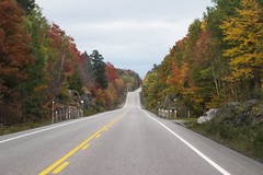 Down the Road of Colour (a56jewell) Tags: road red orange fall yellow colours algonquinpark sepoct a56jewell
