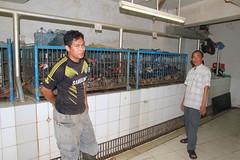 IMG_4211 (FAO ECTAD Indonesia) Tags: market visit jakarta 2014 lbm mentoring melawai
