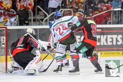 "DEL15 Düsseldorfer EG vs. Augsburg Panthers 28.12.2014 072.jpg • <a style=""font-size:0.8em;"" href=""http://www.flickr.com/photos/64442770@N03/15573801254/"" target=""_blank"">View on Flickr</a>"