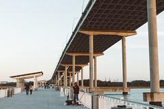 Charleston, SC (Dan | Hacker | Photography) Tags: bridge film architecture river southcarolina charleston arthurraveneljrbridge vsco