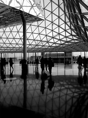 (danae....) Tags: roof blackandwhite glass architecture reflections space onexplore gridshell