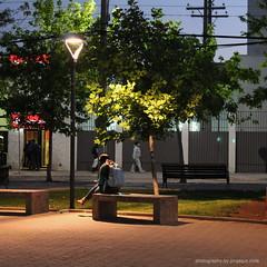Te leo en la plaza... (SOBREVALORADO) Tags: chile plaza girl night canon reading luces noche sitting streetlamp leer lamps luminarias chilean iluminacin sentada quilpu