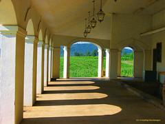 Original Palladio Portico at Barboursville Vineyards (creepingvinesimages) Tags: shadows wine vineyards portico palladio barboursville