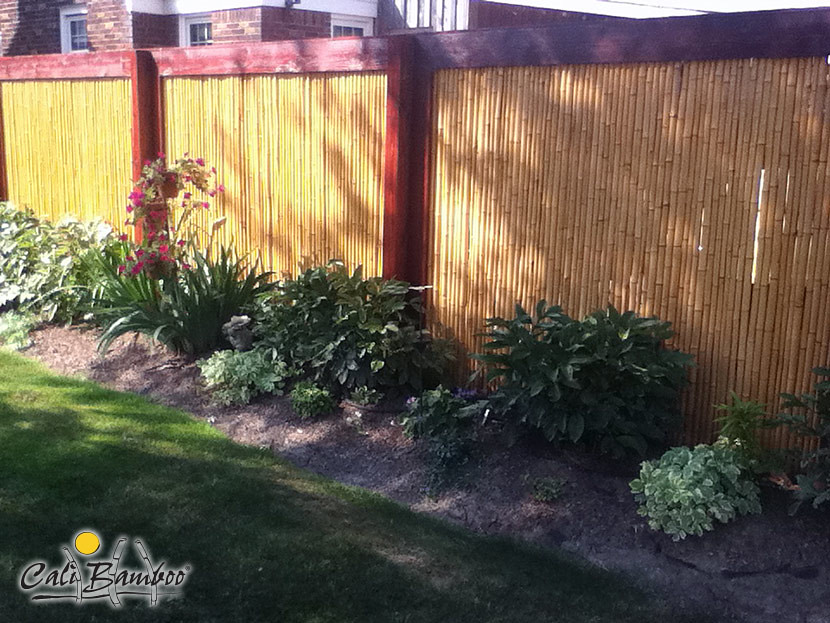 1 in  Natural 6ft  x 6ft  Rolled Bamboo Fencing