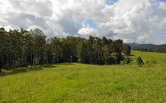 Lot 100 Grandis Glen, Congarinni North NSW