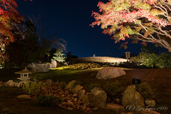 (GenJapan1986) Tags: 2014          garden  autumn night kyoto temple japan nikond600 distagont225 zf2 carlzeiss