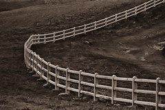 Open . . (heinrich_511) Tags: monochrome fence mood heart pov perspective tone