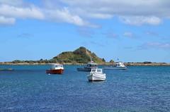 Island Bay (Wellington)